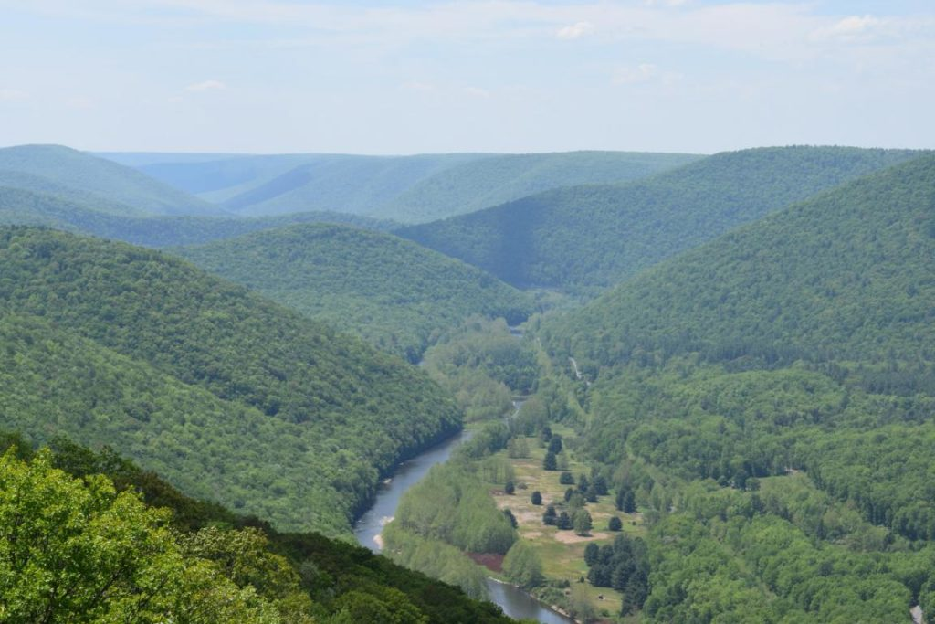 Vista from the Mid State Trail in Tioga County by Jeff Mitchell